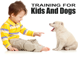 Training for Kids and Dogs